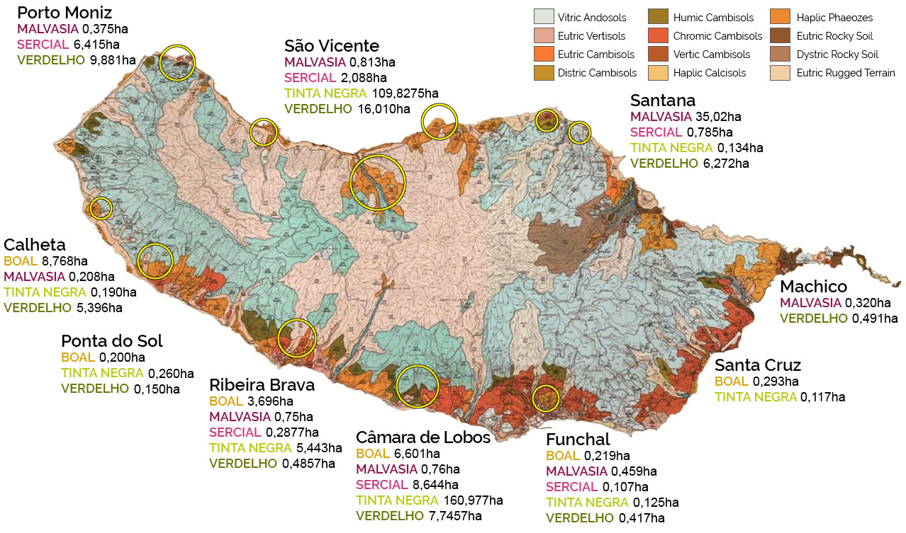 grape varieties distribution map